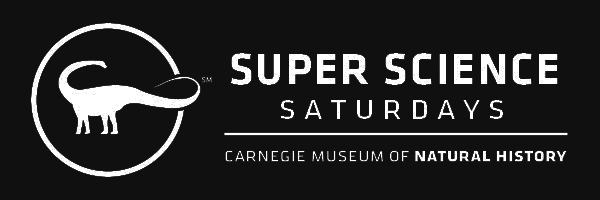 Carnegie Museum of Natural History Super Science Saturdays